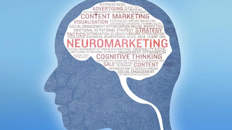 neurociencia-marketing.jpg